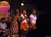Performance at Legendary Blues Alley Jazz